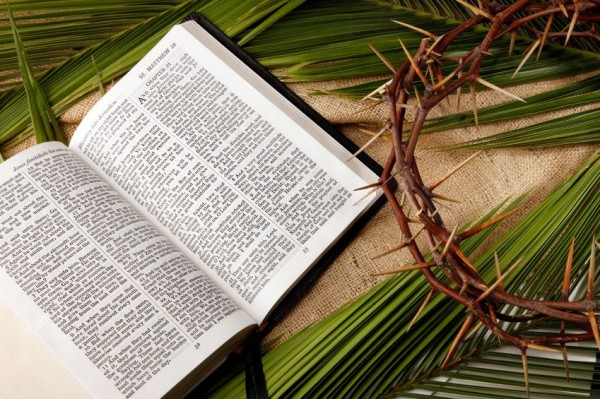 Bible-Crown of Thorns