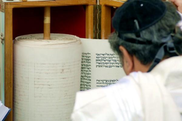Reading-Torah-scroll-tik