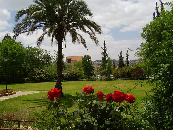 Gan HaShoshanim-Rose Garden-Talbieh