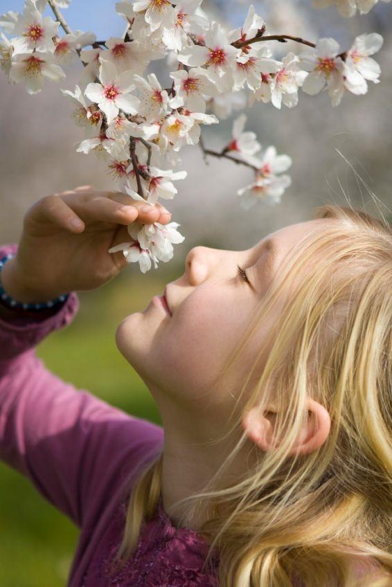blossom-girl-almond