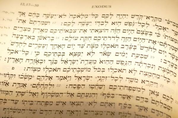Exodus 12-Passover-portion