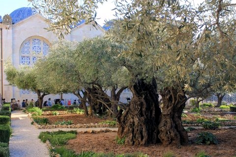 Garden-Gethsemane-Church-Nation