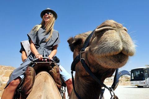 Tourist-Camel