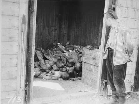 A Holocaust survivor views a pile of bodies stacked in a shed in the Ohrdruf concentration camp in Germany.  Approximately two thirds of Europe's nine million Jews were murdered in the Holocaust.