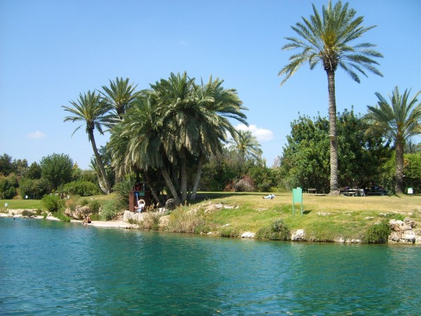 Gan Hashlosha-National Park-Pool