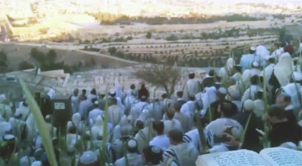 Hoshana Rabbah celebration on the Mount of Olives.