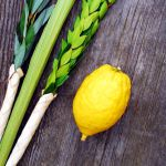 Lulav-and-Etrog-vertical