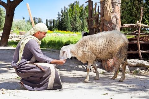An Israeli portrays a Biblical shepherd