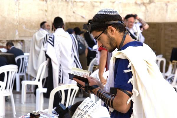A Jewish man wearing a kippah, tefillin (phylacteries), and a tallit (prayer shawl) prays at the Western (Wailing) Wall using a siddur (prayer book).