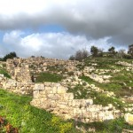 Shomron-pot shards