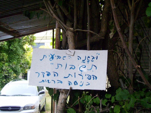A resident of Holon, Israel, has posted a sign stating the fruits on the trees in his backyard are hefker (abandoned property) during the Shemitah year.