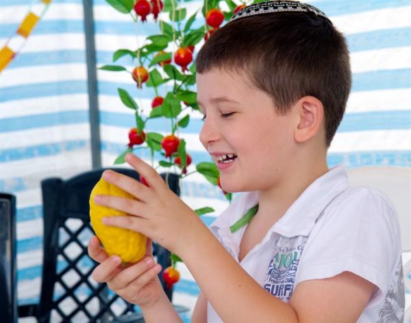sukkah-Israel-etrog-citron-Four Species