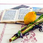 A lulav and etrog (citron)
