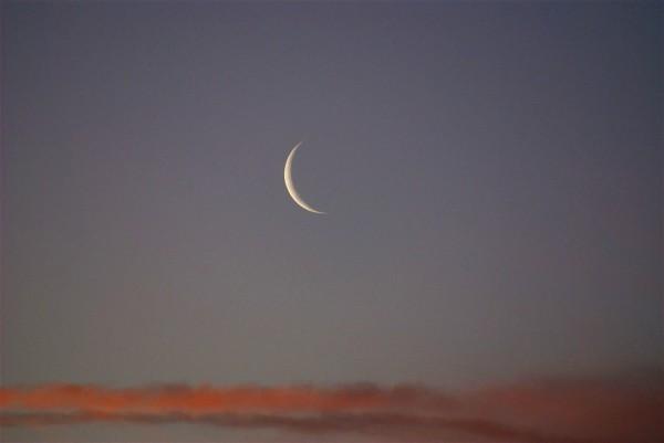 new moon-Rosh Chodesh