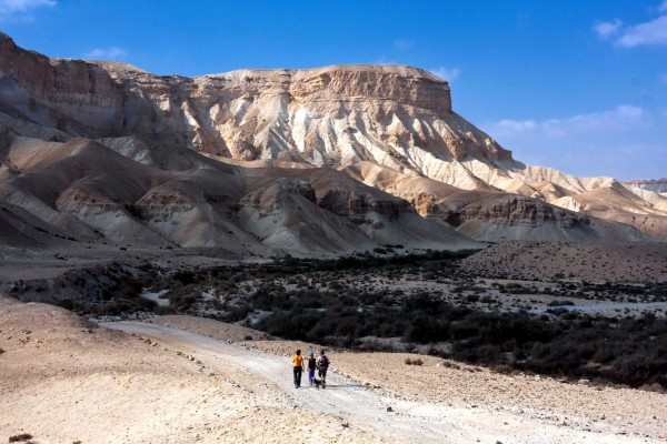 Negev-settlement-Israel-Aliyah