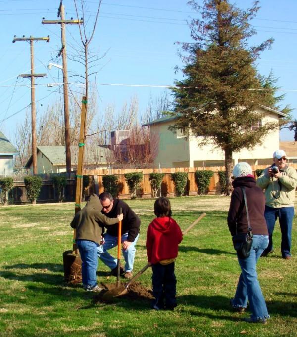 An Israel family plants a tree on Tu B'Shvat.