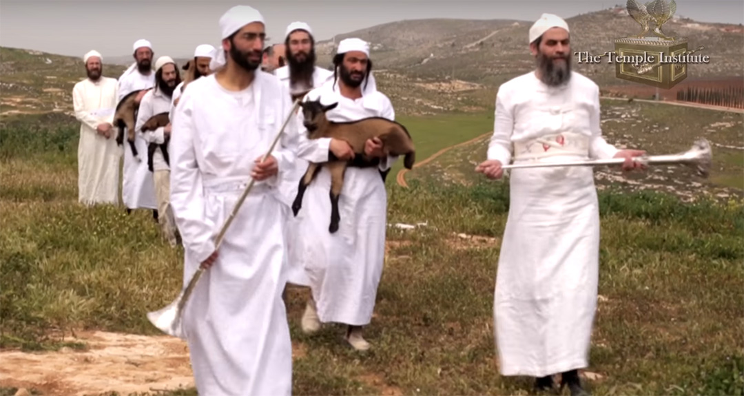 Levitical Priests in training practice the Passover offering.  <em>(Source: Temple Institute Youtube capture)</em>