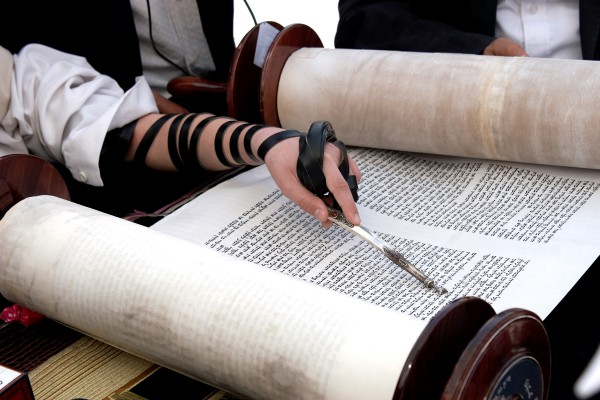 Orthodox Jews reads Torah scroll with yad (hand pointer)
