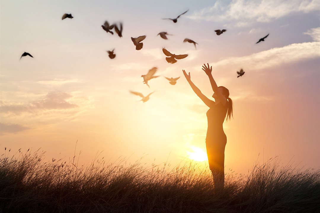 Woman in sunset, birds flying, freedom